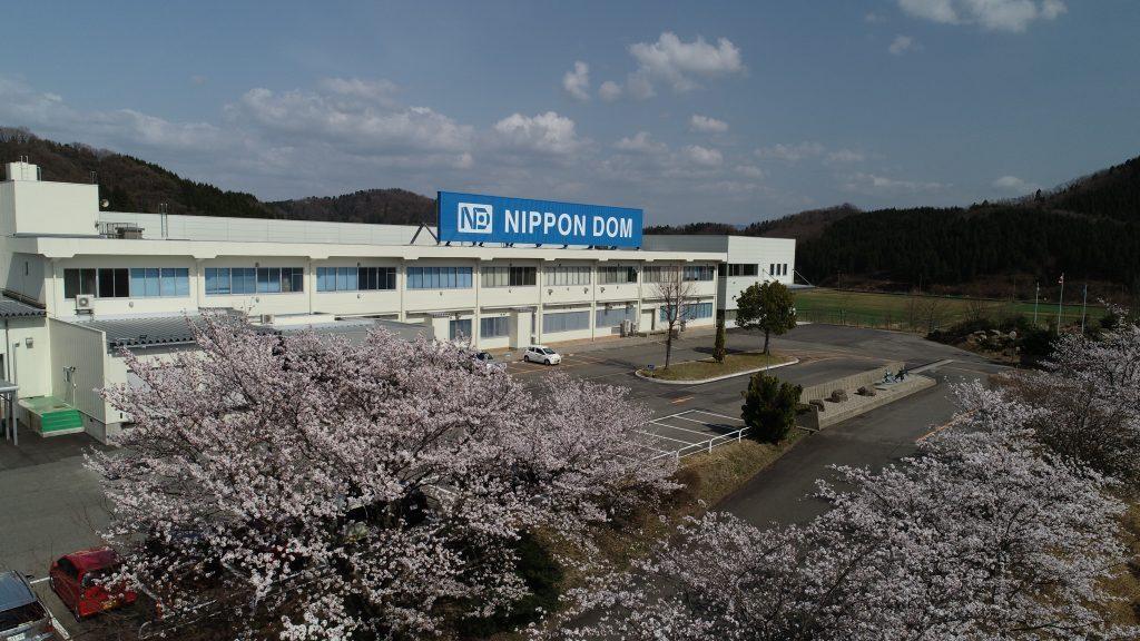 会社の桜が満開です